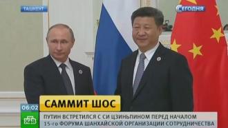 Главы РФ, КНР и Монголии на трехсторонней встрече обсудили новые возможности ШОС