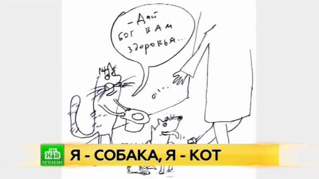 Бездомным животным помогут петербургские карикатуры.Санкт-Петербург, благотворительность, живопись и художники, животные.НТВ.Ru: новости, видео, программы телеканала НТВ