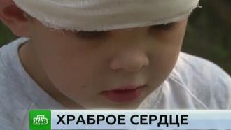 Храбрый иркутский первоклассник спас соседку от разъяренной собаки