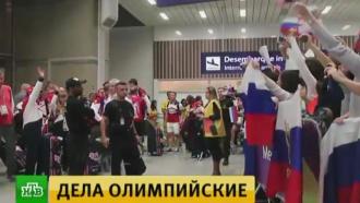 Несколько российских атлетов обжаловали в суде отстранение от Олимпиады