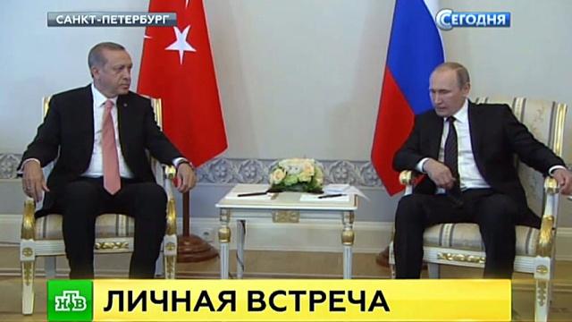 Эрдоган поблагодарил «дорогого друга Владимира» за поддержку после путча.переговоры, Путин, Турция, экономика и бизнес, Эрдоган.НТВ.Ru: новости, видео, программы телеканала НТВ