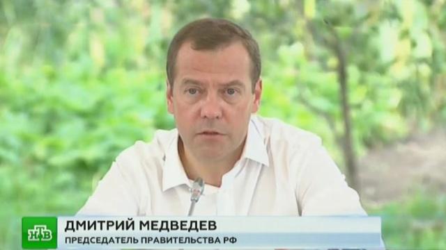 Медведев: новый «дачный» закон решит массу насущных проблем садоводов.жилье, законодательство, Курская область, Медведев, сельское хозяйство.НТВ.Ru: новости, видео, программы телеканала НТВ