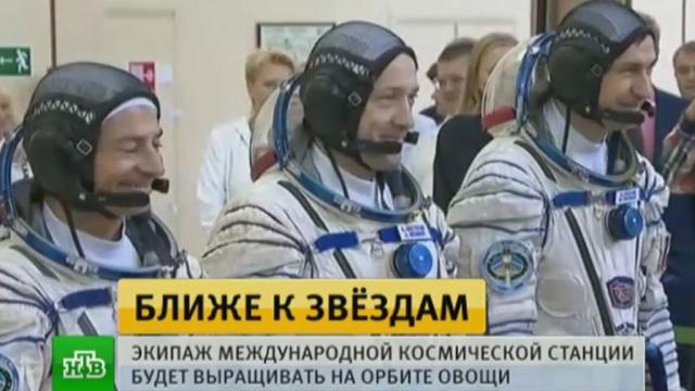 Вместе сэкипажем на МКС отправится модель пилотируемого корабля.МКС, космонавтика, космос, наука и открытия.НТВ.Ru: новости, видео, программы телеканала НТВ