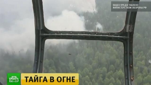 Охваченные пожарами районы Иркутской области патрулируют вертолеты Ми-8.Иркутская область, МЧС, лесные пожары.НТВ.Ru: новости, видео, программы телеканала НТВ