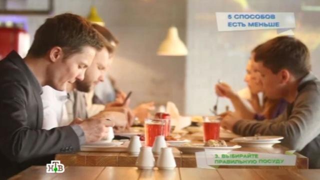 Пять способов есть меньше.еда, здоровье, наука и открытия, продукты.НТВ.Ru: новости, видео, программы телеканала НТВ