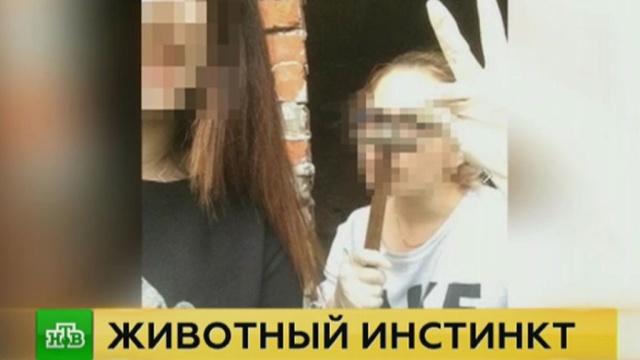 Расчленявшая животных студентка хвасталась своими «подвигами» в институте.Хабаровск, жестокость, животные, издевательства.НТВ.Ru: новости, видео, программы телеканала НТВ