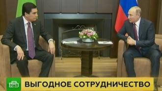 Путин обсудил с президентом Туркменистана экономические вопросы