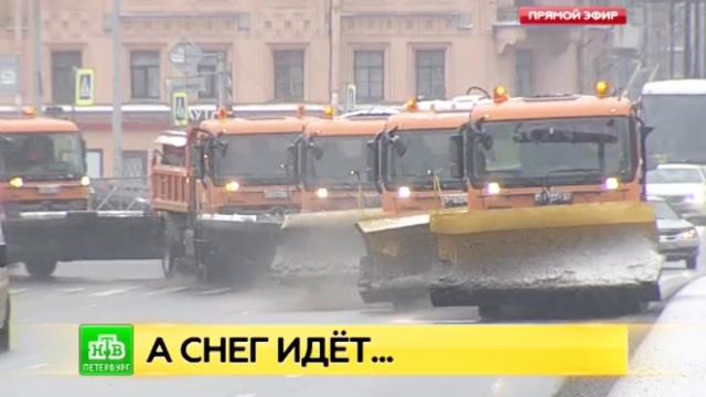 Коммунальные службы очищают Петербург после первого мощного снегопада.ДТП, ЖКХ, Санкт-Петербург, погода, снег.НТВ.Ru: новости, видео, программы телеканала НТВ