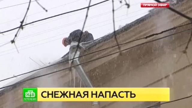 Жилищный комитет Петербурга нашел десятки нарушений по уборке дворов от снега.ЖКХ, Санкт-Петербург, погода, пробки, снег.НТВ.Ru: новости, видео, программы телеканала НТВ