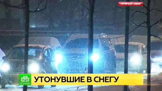 Петербуржцы с трудом находят на заснеженных дорогах уборочную технику.ЖКХ, Санкт-Петербург, погода, пробки, снег, соцсети.НТВ.Ru: новости, видео, программы телеканала НТВ