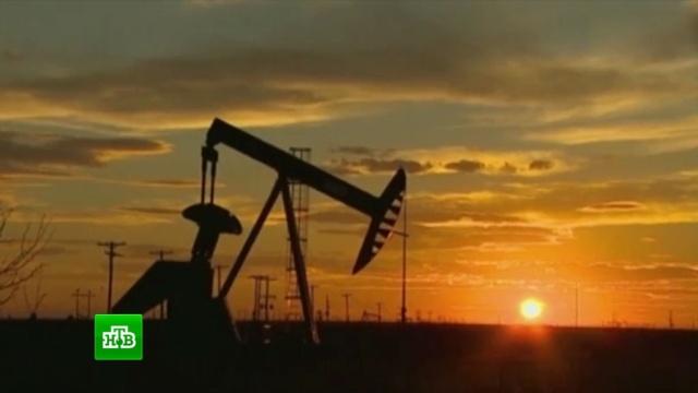 ВТехасе открыли крупнейшее вСША месторождение нефти игаза.США, нефть, полезные ископаемые.НТВ.Ru: новости, видео, программы телеканала НТВ