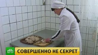 Представителям ООН провели экскурсию по луганской женской колонии