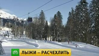 Экстрим, хаски и горные няни: в горно-туристическом центре «Газпром» в Сочи официально стартовал сезон