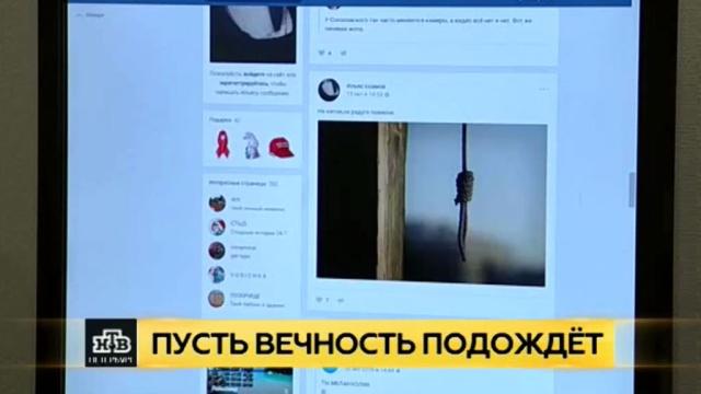 Номерок на самоубийство: специалисты из Рязани помогают петербургским психологам спасать подростков.Интернет, Санкт-Петербург, дети и подростки, самоубийства, соцсети.НТВ.Ru: новости, видео, программы телеканала НТВ