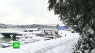 Европу сковало льдом инакрыло снегом