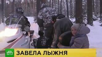 Все заблудившиеся под Томском школьники госпитализированы