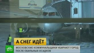 В Москве за сутки выпала пятая часть месячной нормы осадков