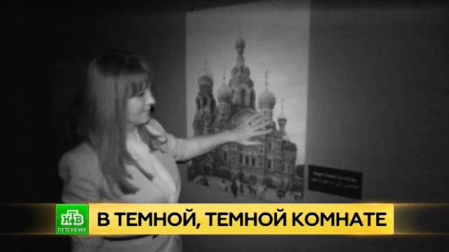 Искусство на ощупь: петербуржцев приглашают посетить «слепой аттракцион».Санкт-Петербург, выставки и музеи, искусство, слепые.НТВ.Ru: новости, видео, программы телеканала НТВ