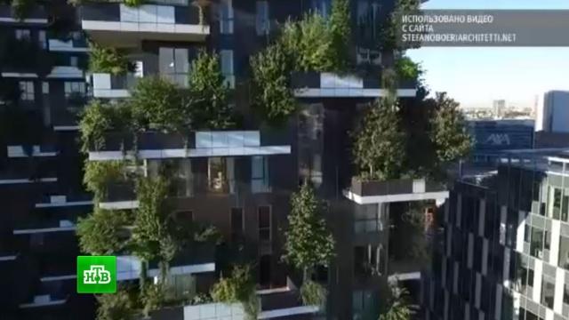 Итальянский архитектор построит в китайском Нанкине «зеленый» небоскреб.Китай, небоскребы, строительство, экология.НТВ.Ru: новости, видео, программы телеканала НТВ