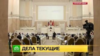 Парламентарии Северной столицы просят Минкульт не спешить собъединением РНБ иРГБ
