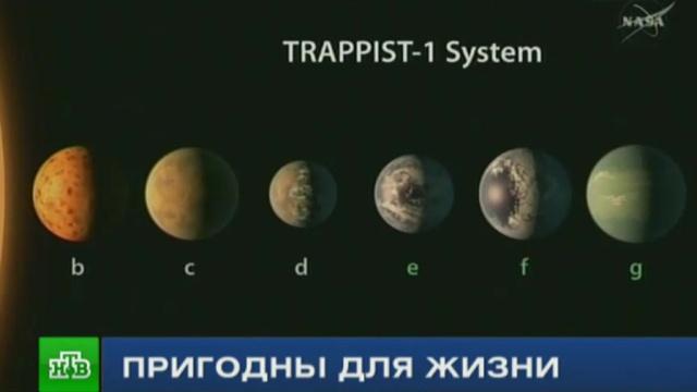 В созвездии Водолея нашли семь похожих на Землю экзопланет.космос, наука и открытия, планеты.НТВ.Ru: новости, видео, программы телеканала НТВ