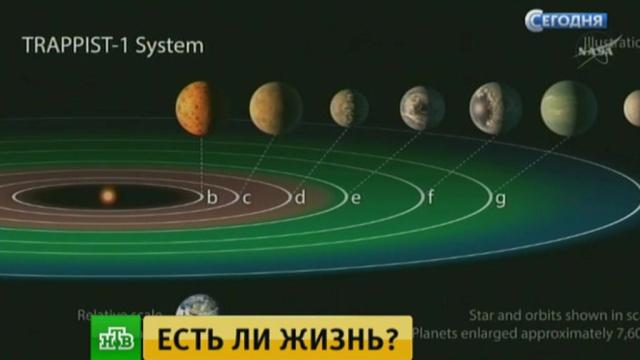 Одна из найденных экзопланет совпадает с Землей по размерам и температурным условиям.Земля, космос, НАСА, наука и открытия, астрономия.НТВ.Ru: новости, видео, программы телеканала НТВ