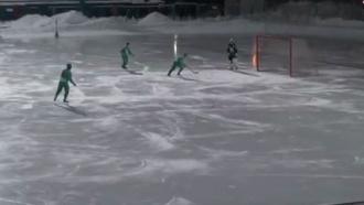 Вматче ЧР по хоккею смячом команды умышленно забили 20голов всвои ворота