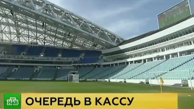 Представитель FIFA высоко оценил «особенный стадион» в Сочи.Сочи, спорт, стадионы, ФИФА, футбол.НТВ.Ru: новости, видео, программы телеканала НТВ