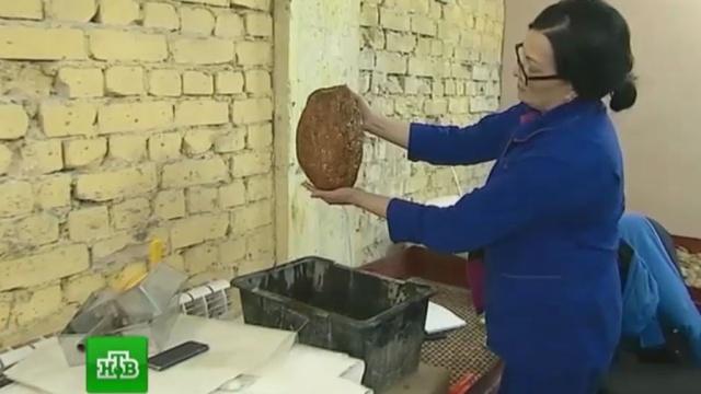 В Калининграде решают, что делать с добытым гигантским янтарем.Калининградская область, янтарь.НТВ.Ru: новости, видео, программы телеканала НТВ