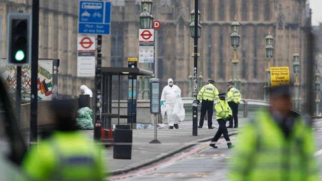 Полиция Лондона задержала еще двоих подозреваемых впричастности ктеракту.Великобритания, задержание, Лондон, полиция, терроризм.НТВ.Ru: новости, видео, программы телеканала НТВ