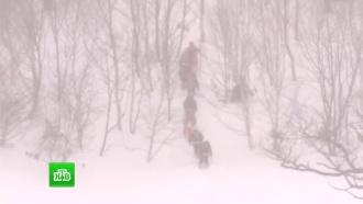 На горнолыжном курорте вЯпонии сошла лавина, есть жертвы