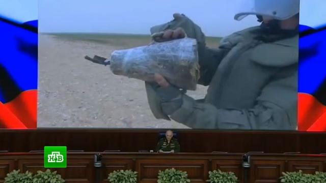 Российские саперы при помощи «Уранов» и собак очищают Пальмиру от снарядов.Сирия, армия и флот РФ, войны и вооруженные конфликты, разминирование.НТВ.Ru: новости, видео, программы телеканала НТВ