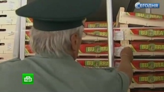 Россельхознадзор предложил расширить список уничтожаемой на границе продукции