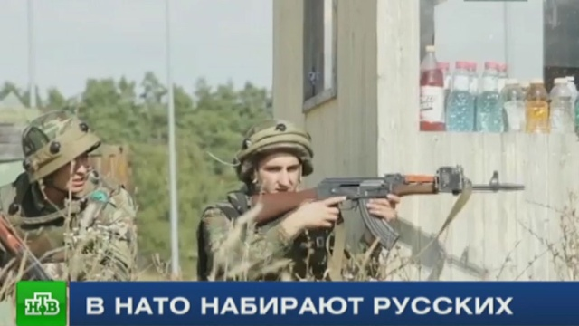 Русскоязычные немцы не хотят воевать против «своих» на учениях НАТО.Германия, НАТО, США, армии мира, учения.НТВ.Ru: новости, видео, программы телеканала НТВ