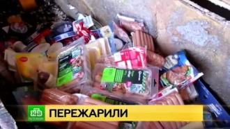 Питерский Россельхознадзор сжег европейскую «санкционку»