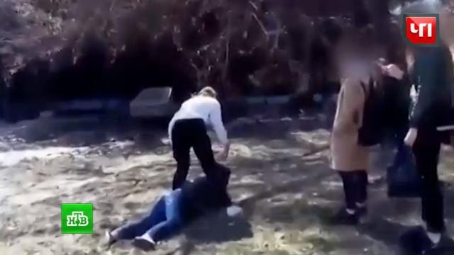 Новосибирская полиция изучает видео драки школьниц.дети и подростки, драки и избиения, Новосибирск, школы, жестокость.НТВ.Ru: новости, видео, программы телеканала НТВ