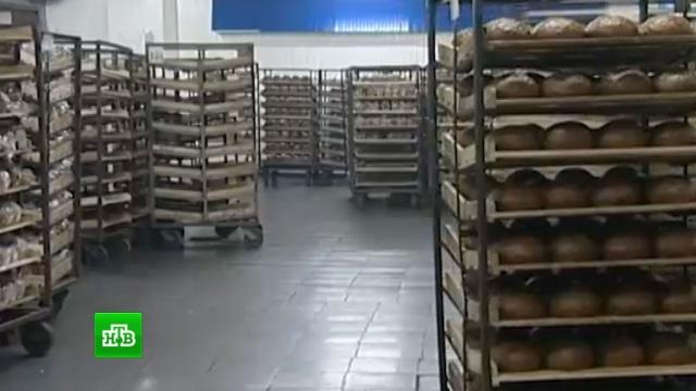 Торговые сети раскритиковали запрет на возврат непроданного хлеба.еда, магазины, продукты, Роспотребнадзор, торговля, хлеб.НТВ.Ru: новости, видео, программы телеканала НТВ