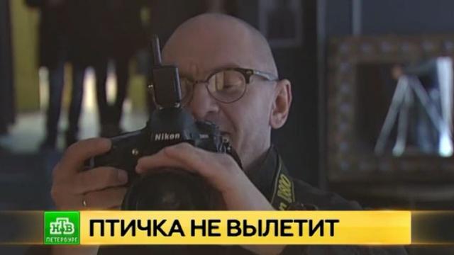 Голливудский мастер начал работу на «Ленфильме» со звездной фотосессии.Голливуд, Ленфильм, Санкт-Петербург, фото.НТВ.Ru: новости, видео, программы телеканала НТВ