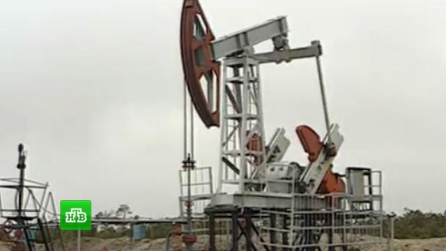 Россия перевыполнила обязательства по сокращению нефтедобычи.биржи, нефть, тарифы и цены, экономика и бизнес.НТВ.Ru: новости, видео, программы телеканала НТВ