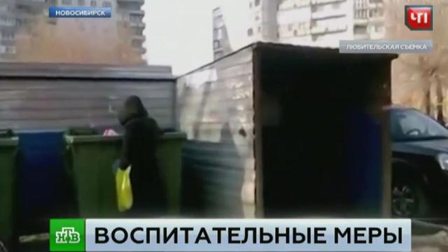 В Новосибирске мать «воспитывала» маленькую дочь, посадив в мусорный контейнер.дети и подростки, мусор, Новосибирск, Следственный комитет, жестокость.НТВ.Ru: новости, видео, программы телеканала НТВ