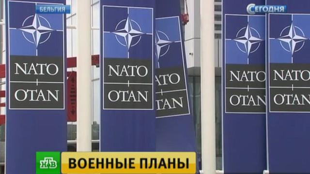 На «ознакомительном» саммите НАТО обсудят отношения с Россией.Бельгия, Брюссель, Германия, Исламское государство, НАТО, США, Трамп Дональд, Франция.НТВ.Ru: новости, видео, программы телеканала НТВ