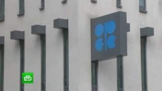 Нефть дешевеет вожидании решения ОПЕК по ограничению добычи