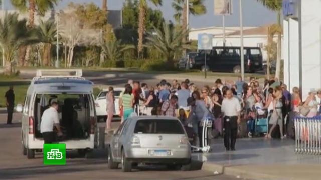 МИД Египта: препятствий для возвращения российских туристов нет.авиация, аэропорты, Египет, туризм и путешествия.НТВ.Ru: новости, видео, программы телеканала НТВ