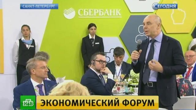 На ПМЭФ призвали искать «буйных реформаторов» для правительства.Греф, Кудрин, Санкт-Петербург, экономика и бизнес.НТВ.Ru: новости, видео, программы телеканала НТВ