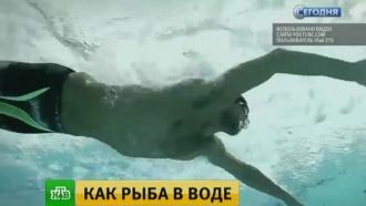 Фелпс решил устроить заплыв с большой белой акулой