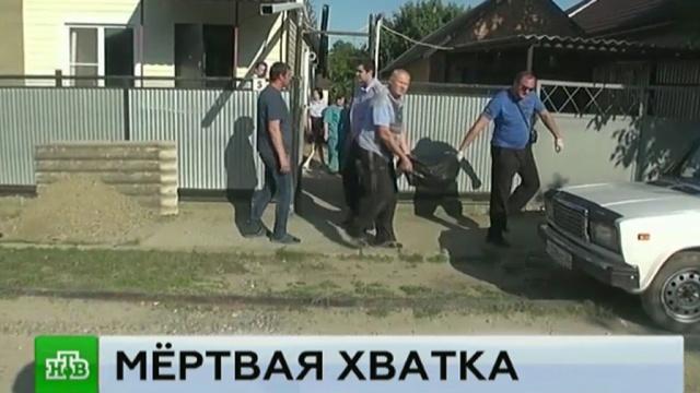 СК изучает обстоятельства смерти девочки от укусов собаки в Ставрополе.дети и подростки, животные, нападения, собаки.НТВ.Ru: новости, видео, программы телеканала НТВ