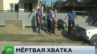 СК изучает обстоятельства смерти девочки от укусов собаки в Ставрополе