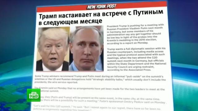 СМИ узнали опланах Трампа провести полноформатную встречу сПутиным.Песков, Путин, СМИ, США, Трамп Дональд.НТВ.Ru: новости, видео, программы телеканала НТВ