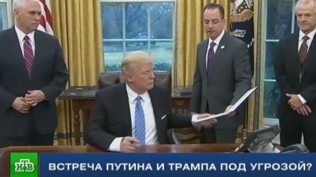 Быть или не быть встрече Путина с Трампом: в США поднялась политическая буря.Песков, Путин, СМИ, США, Трамп Дональд.НТВ.Ru: новости, видео, программы телеканала НТВ