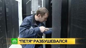 Вирус Petya парализовал работу петербургского ГИБДД